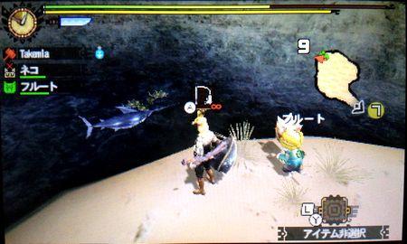カジキの魚影