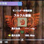 【MH4】ハンマー攻略プレイ日記 集会所クエスト★5編その2 VSフルフル亜種