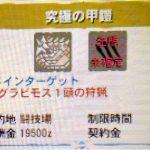 【MH4G】イベントクエスト「究極の甲鎧」の攻略プレイ記とデータ