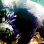 【MH4】ハンマー攻略プレイ日記 村クエスト★5編その2 VS狂竜化ババコンガ