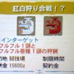 【MH4G】イベントクエスト「紅白狩り合戦!?」の攻略プレイ記とデータ