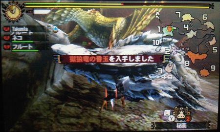 獄狼竜の昏玉を入手