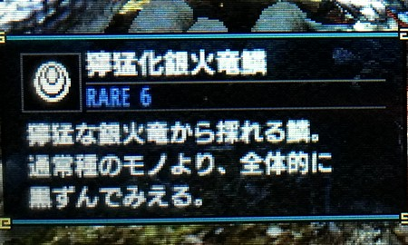 獰猛化銀火竜鱗