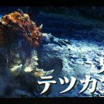 【MHX】攻略プレイ記 村★2編 VSテツカブラ&モンニャン隊【モンハンクロス】