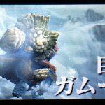 【MHX】攻略プレイ記 ポッケ村編 VSガムート&巨獣鎚&タイフーントリガーII【モンハンクロス】
