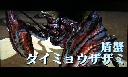 盾蟹ダイミョウザザミ