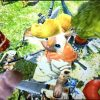 【MHX】攻略プレイ記 訓練クエスト&村クエスト★1編 古代林めぐり【モンハンクロス】