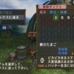 MHP3 イベントクエスト#23「孤島のたまご祭り!」をクリア