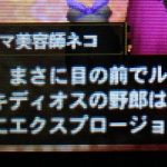 【MH4G】ハンマー攻略プレイ記 カリスマ美容師ネコの依頼とG級激昂ラージャン 村★10(上位)編その9