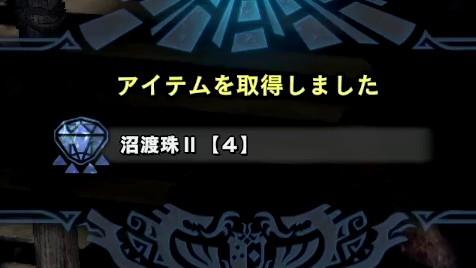 沼渡珠II【4】