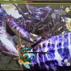 【MH4G】ハンマー攻略プレイ記 VSガララアジャラ亜種&ダイミョウザザミ亜種 集G★1編その6