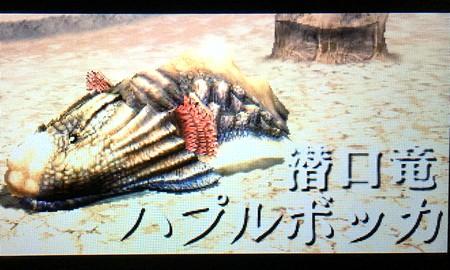 潜口竜ハプルボッカ