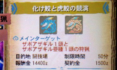 化け鮫と虎鮫の競演