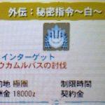 【MH4G】極秘指令16010 第3話「外伝:秘密指令~白~」の攻略プレイ記&データ