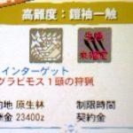 【MH4G】ハンマー攻略プレイ記 VS極限状態グラビモス 集G★3番外編